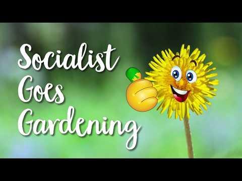 Socialist goes gardening 🌱