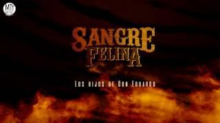 Sangre Felina - Los Hijos De Don Eduardo (Video Lyric)