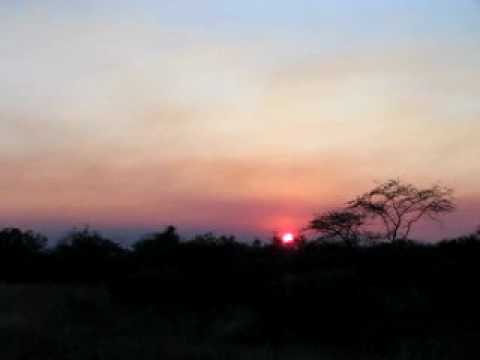 Beautiful Sunset, Bush Walk, Skukuza Camp at Kruger National Park in South Africa