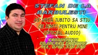 Stefan De La Barbulesti - As vrea sa stiu iubito ce simti pentru mine (Oficial Audio)