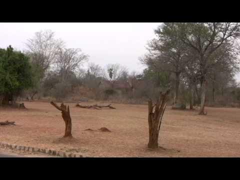 Kruger Gate.M2TS