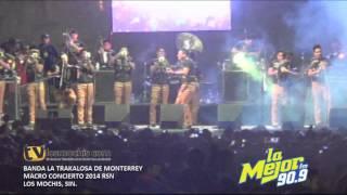Banda La Trakalosa de Monterrey (2)