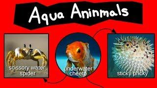 Internet Names for Aqua Aninmals