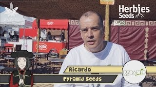Herbie Interviews Pyramid Seeds