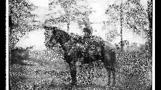 Will Conrad. The Union Mare & The Confederate Grey