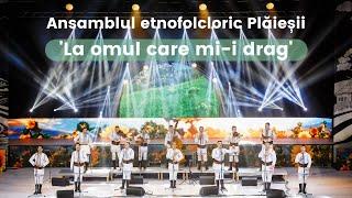 Nicolae Gribincea & Plaiesii - La omul care mi-i drag