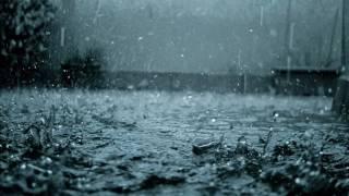 Rain-PiNguyễn (Pr.ChilledCow)