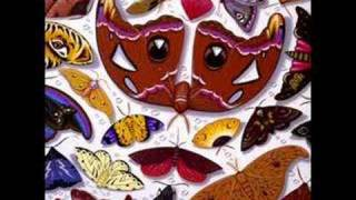 Talk Talk - CHAMELEON DAY - 1986