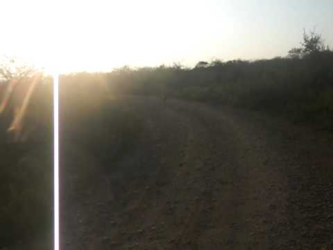 South Africa 290.mov