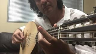 Persian Flamenco Oud Babak Amini