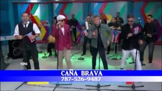 CANA BRAVA -No me faltes nunca