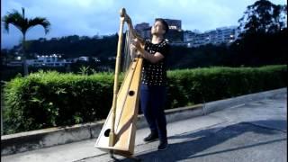 Enrique Iglesias - SUBEME LA RADIO  ft. Descemer Bueno, Zion & Lennox cover en arpa Johnny Jimenez