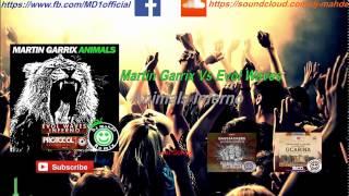 Martin Garrix vs. Evol Waves - Animal Inferno  (David Guetta Mashup)