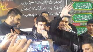 Ali shanawar and Ali jee melbourne 2016 -mohammad ka piyaara nahi hun width=