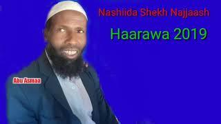 Nashiidaa Afaan Oromo Haarawa 2019