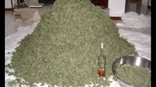 Snoop Dogg ft. Dr.Dre - Smoke Weed Everyday