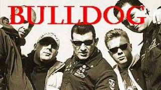 Bulldog - Saturday Night Fight