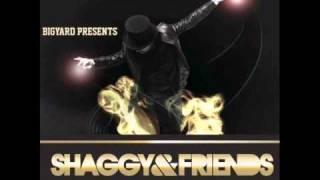 Gal Roll- Shaggy feat. D-Lynx