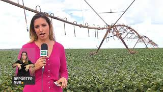 Experiência brasileira mostra como combinar produção de alimentos e uso racional da água