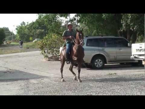 CostaRica/Panama/Nicaragua (deel 07)