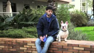 7 Bartosexual - Eu Tenho Um Cão de Estimação - 2ª Temporada
