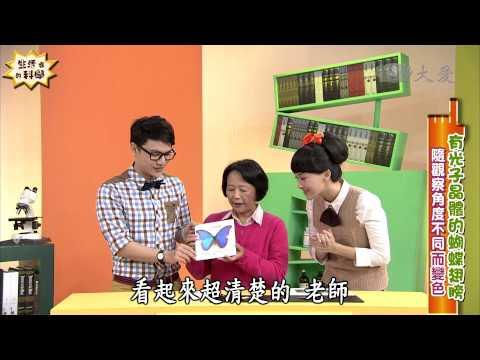 【生活裡的科學】20140419 - 蝴蝶的奈米翅膀 - YouTube