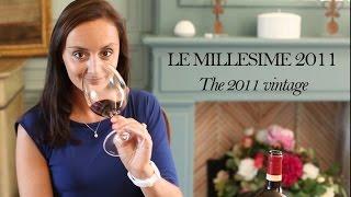 Le millésime 2011 // The 2011 vintage