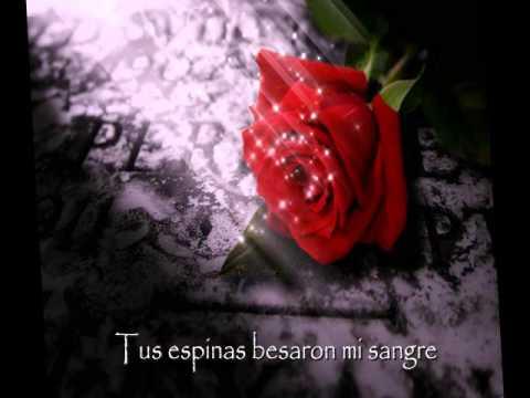 Like A Rose On The Grave Of Love En Espanol de Xandria Letra y Video