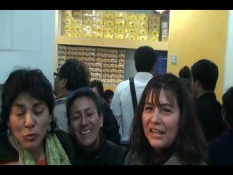 DXN PERU 2010