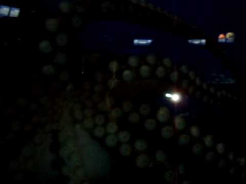Octopus – 2 Oceans Aquarium