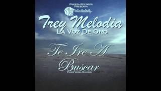 Trey Melodía Te iré a buscar