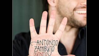António Zambujo - Milagrário Pessoal