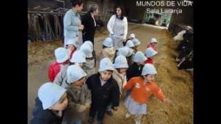 VISITA À VACARIA DO TI MANEL | Creche e Jardim de Infância | MUNDOS DE VIDA
