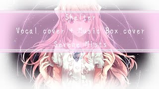 Shelter Vocal Cover + Music Box Cover【💗Serene Mists💗】