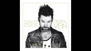 David Cook - Heartbeat [Audio]