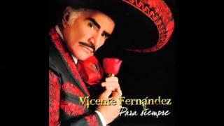 Vicente Fernandez   El ultimo en la fila