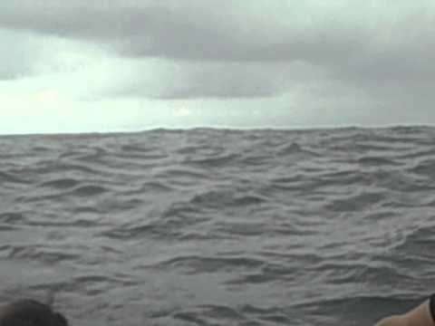 Isla de la Plata, Ecuador – Whale Breach