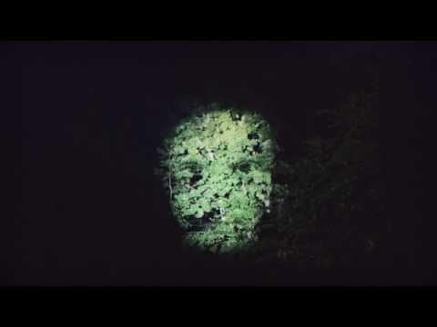 daniel-adams-ray-precis-som-jag-videoinstallation-lagomrecords