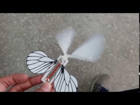 3D列印自製蝴蝶教具