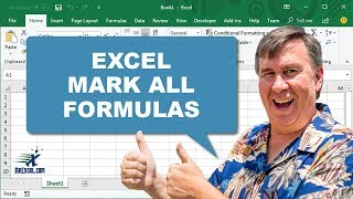 Learn Excel - Conditional Format All Formula Cells Podcast 2066