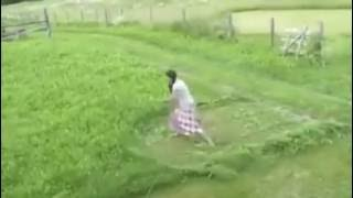 Inheritable Lady Grass cutter