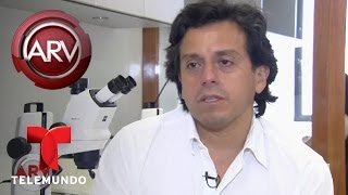 Científico busca curar el Alzheimer a partir de peces | Al Rojo Vivo | Telemundo