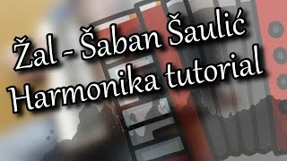 Žal - Šaban Šaulić Harmonika Tutorial [Za početnike] Cover