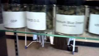 inside the weed club  og kush