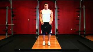 Biceps   Reverse Plate Curls   Exercises Guide!   Live Health Club