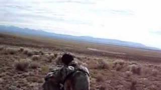 Bison Hunt Colorado