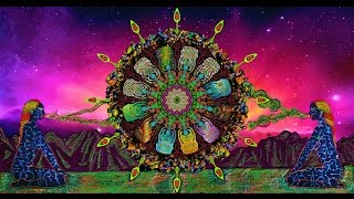 Shpongle - Circuits of the Imagination [Music Video]