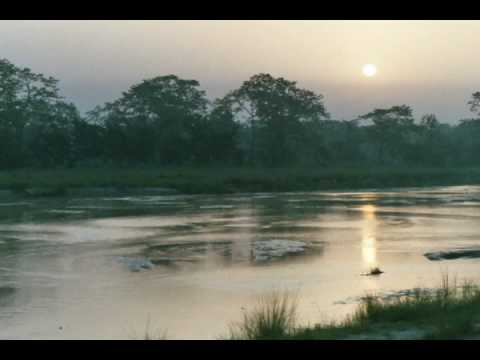 Chitwan: Images from Nepal