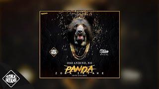ZONA INFAME - OSO ANDINO, NO PANDA 🐻🐼