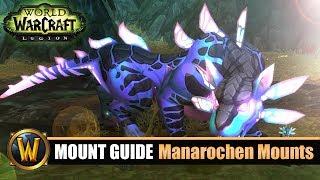 Teufelsgeflecktes Ei Gegenstand World Of Warcraft